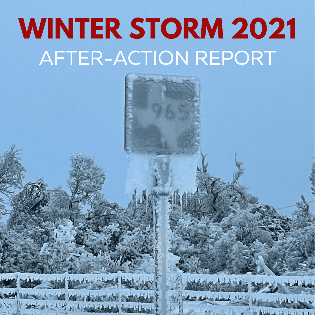 Winter Storm 2021 - After Action Report